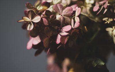 Top 5 Reasons to use Seasonal Wedding Flowers