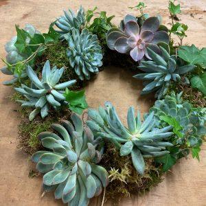 Seasonal living wreath