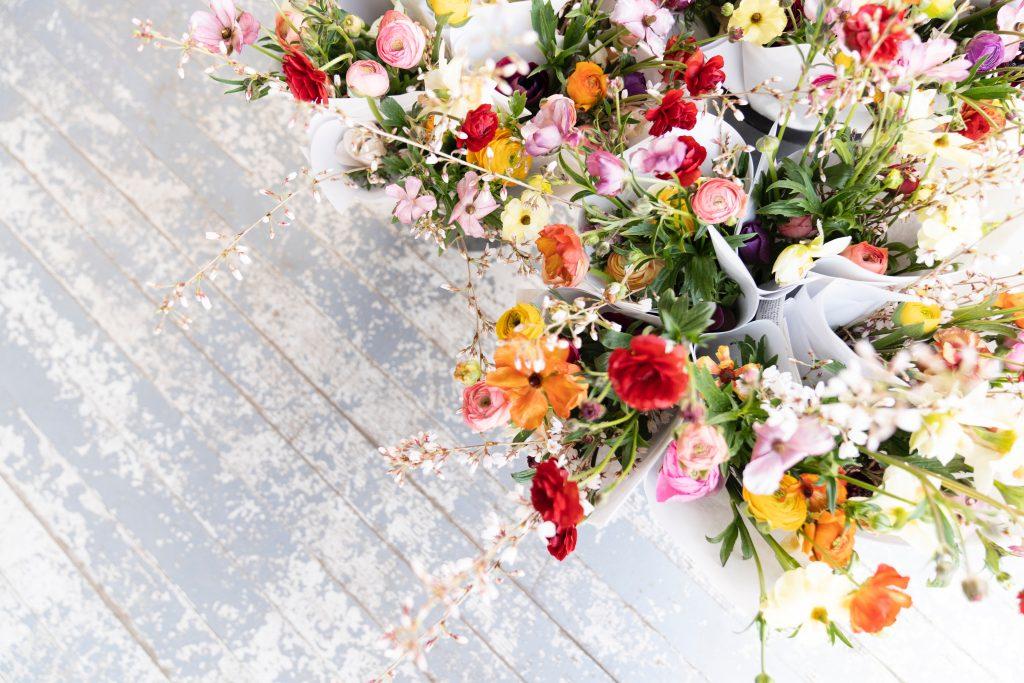 Forage bright spring flowers