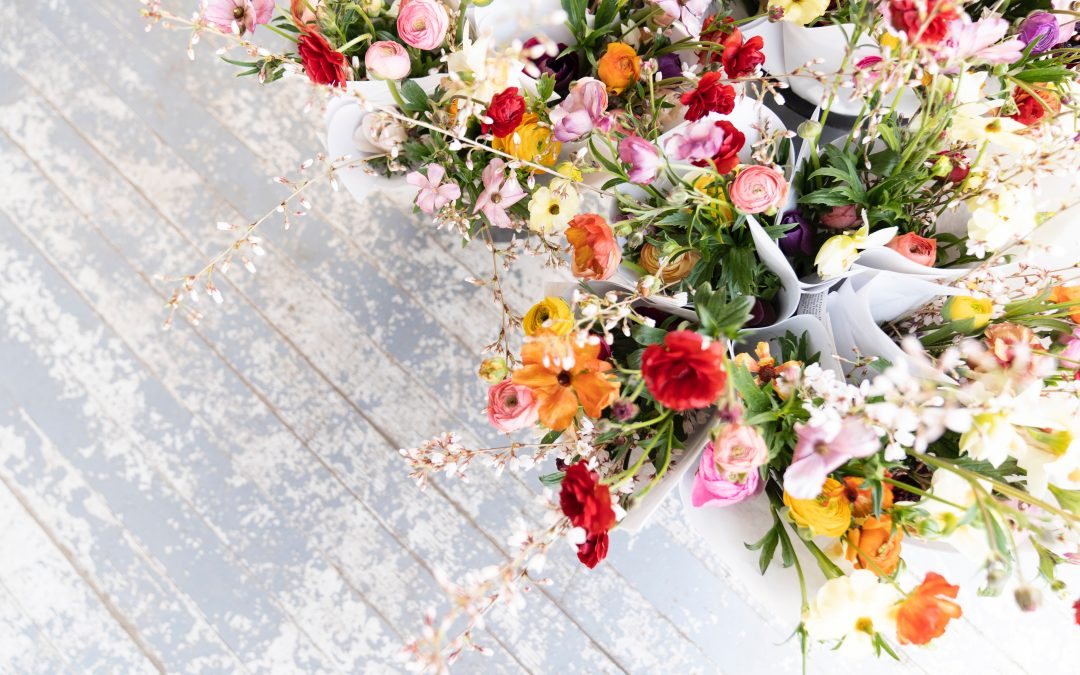 The Ultimate Guide to Spring Flowers